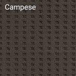 Campaspe