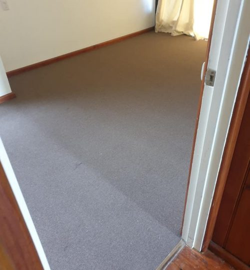carpet connect-kings domain-installation-dining