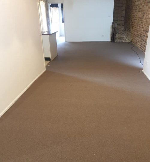 carpet connect-kings domain-installation-loungeroom
