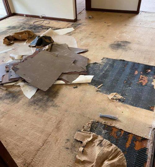 carpetconnectad5