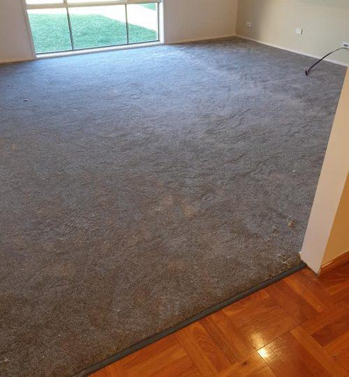 highbury place-steel-carpet connect-installation-sitting area
